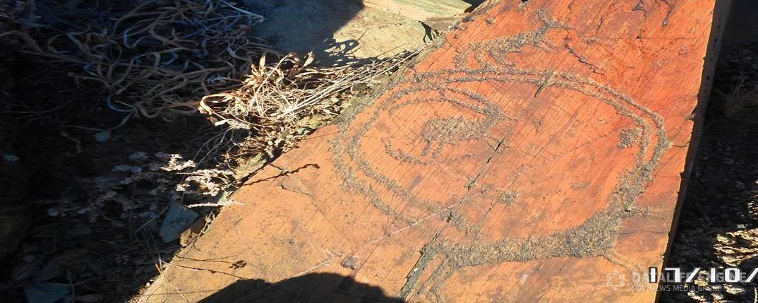 Petroglyphs near Amanbukter